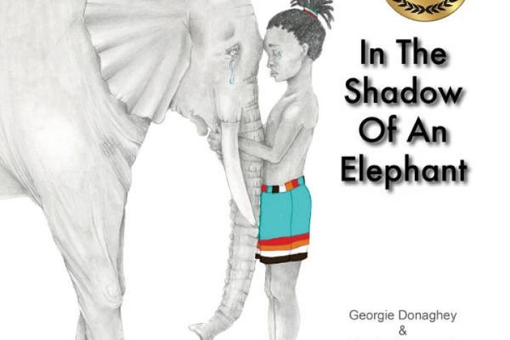 In The Shadow Of An Elephant review by Dimity Powell